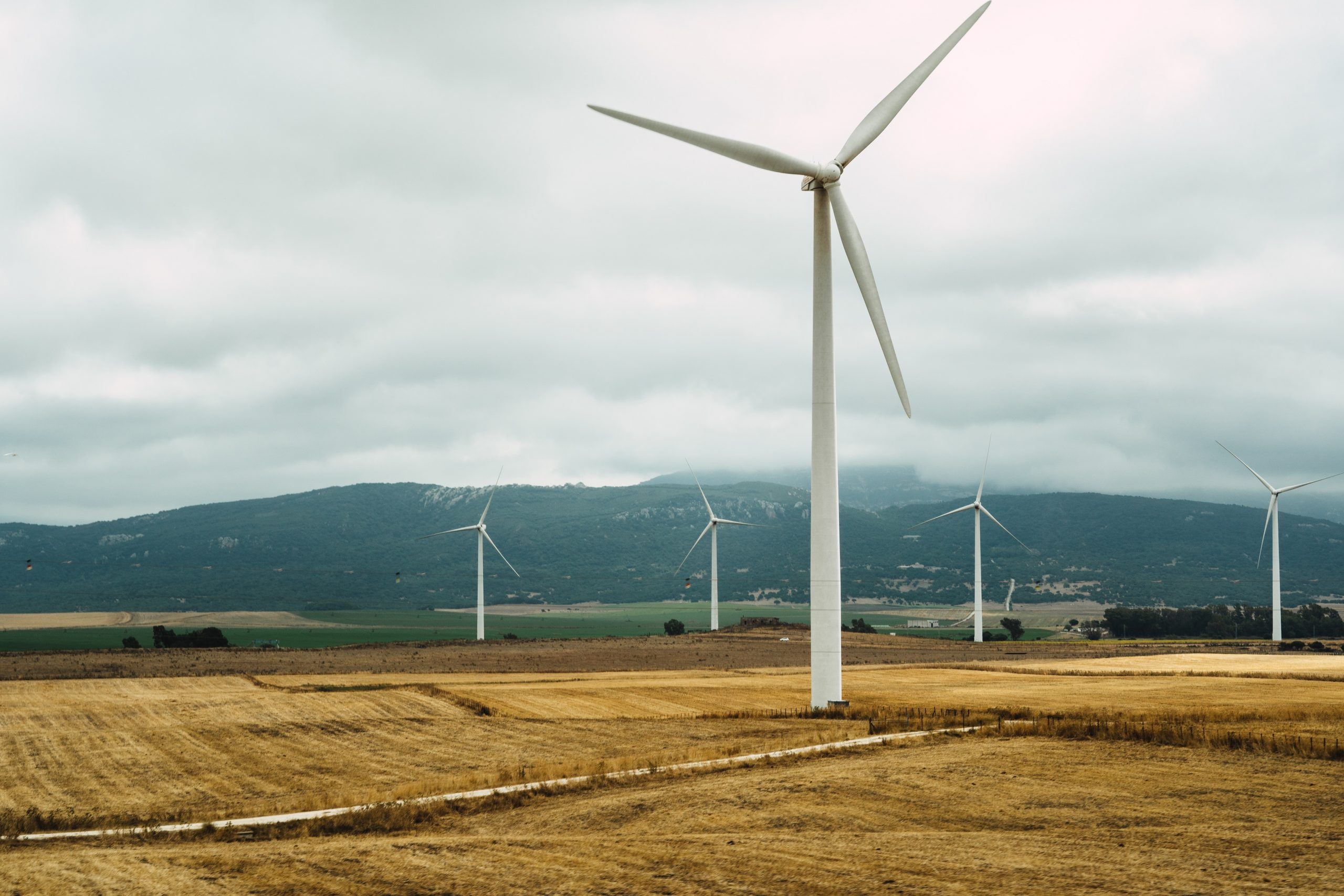 Grøn strøm fra danske vindmøller