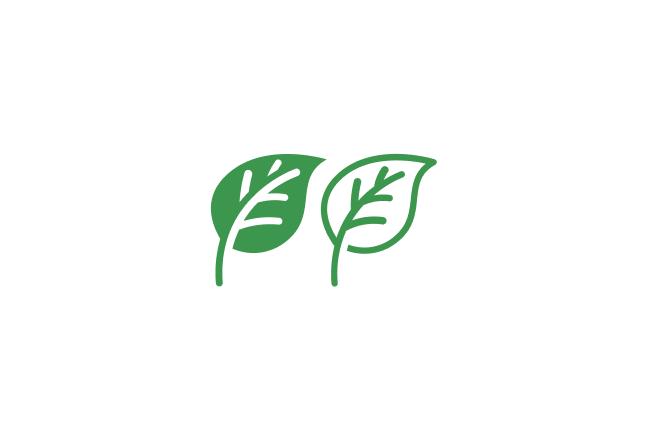 Certificeret grøn strøm