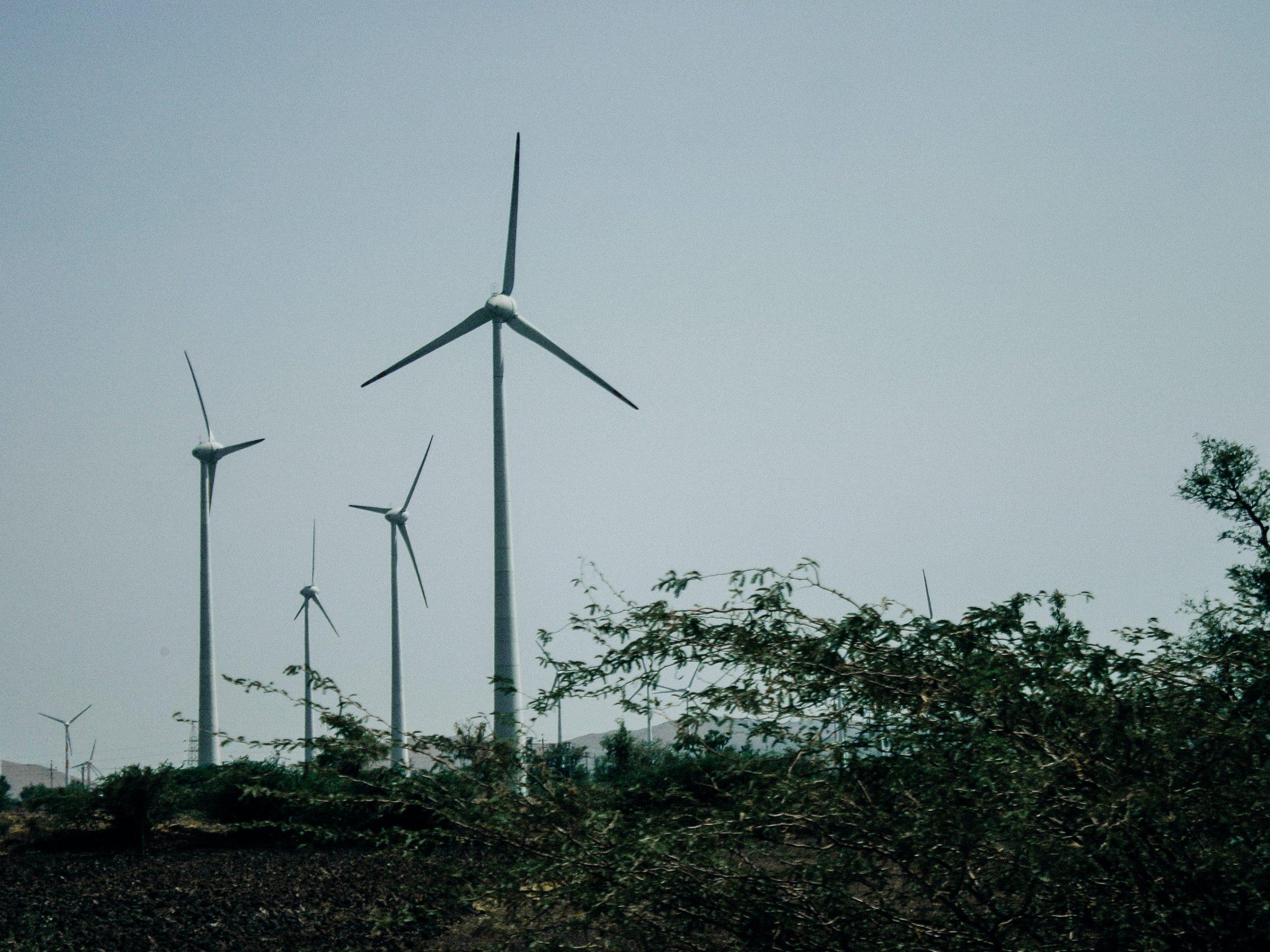 Grøn el fra danske vindmøller