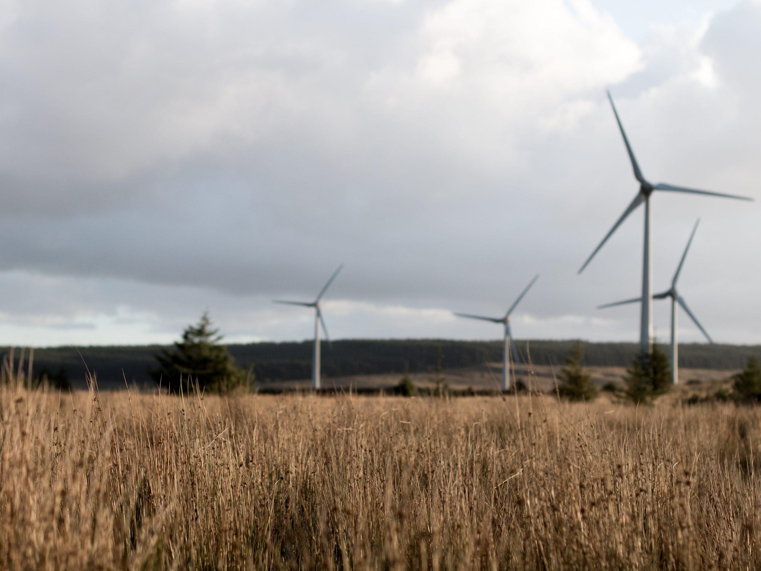 Grøn el fra vedvarende energikilder