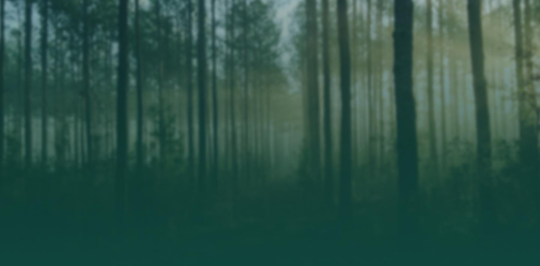 Grøn skov vedvarende el